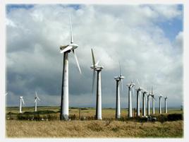 external image windfarm02.jpg